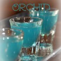 Blue Orchid: Cherry Vodka, Raspberry Liqueur, Blue Curacao