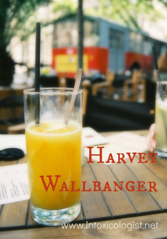 21 Must Try Classic Cocktails: Harvey Wallbanger