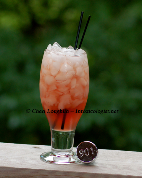 901 Tea-quila Time - created by Cheri Loughlin - photo copyright Cheri Loughlin