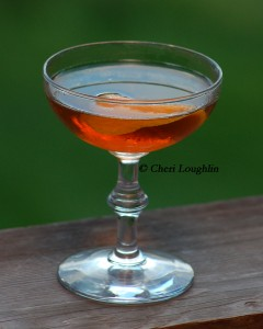 Bombay 2 Classic Cocktail - photo copyright Cheri Loughlin