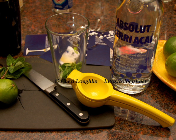 Absolut Berri Acai Mixing and Muddling - photo copyright Cheri Loughlin