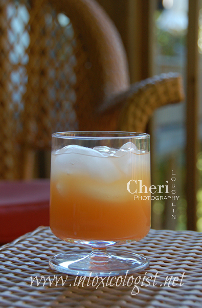 The Greyhound two ingredient drink is a variation on the Salty Dog {Gin, Grapefruit Juice, Salted Rim}