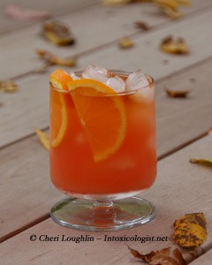 Burnt Orange Tang created by Cheri Loughlin - photo property of Cheri Loughlin