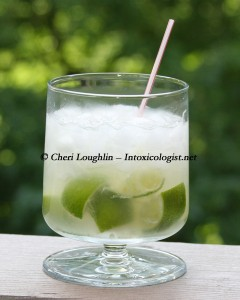 Caipirinha photo copyright Cheri Loughlin