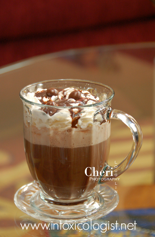 4 Family Friendly Hot Chocolates and Coffees - Flavored for anytime sipping with additional instructions to make them adult nightcap worthy.