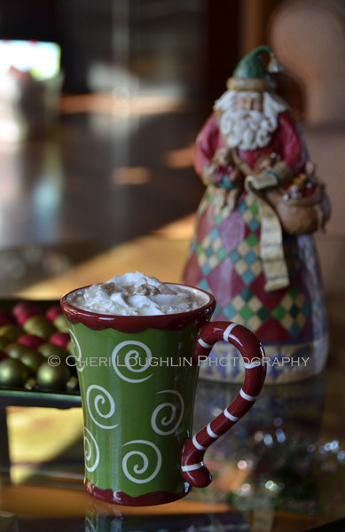 Fireside Cappucino 018 photo copyright Cheri Loughlin