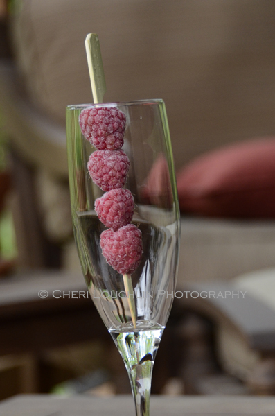 Frozen Raspberries 209 photo copyright Cheri Loughlin
