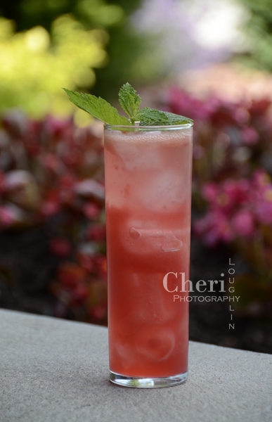 Raspberry Watermelon Mojito