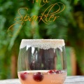 Kick off the next phase of the holiday season with a Fall Sparkler Thanksgiving inspired cocktail with sugar frosted rim.