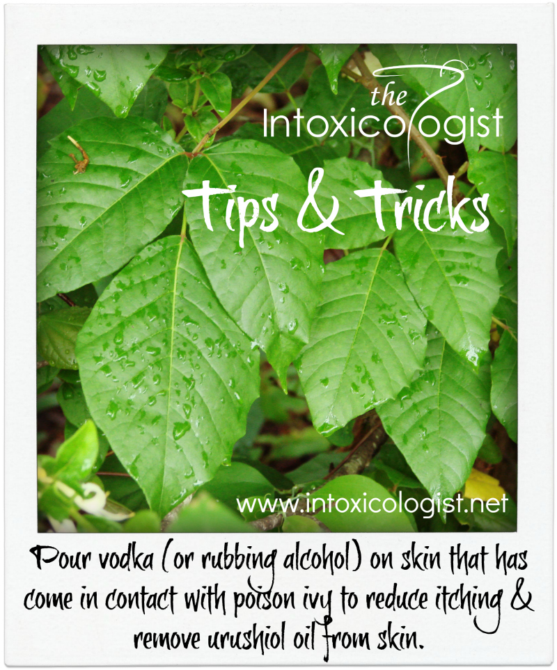 Tips & Tricks: Vodka Reduces Poison Ivy Itch