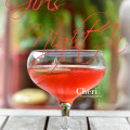 This Girls Night In cocktail is luscious, fun and fruity. The delicious fizzy strawberry flavor complements the fun flavor of Pink Moscato still wine. Dress the drink with a fresh strawberry or go all in with white or dark chocolate covered strawberries.