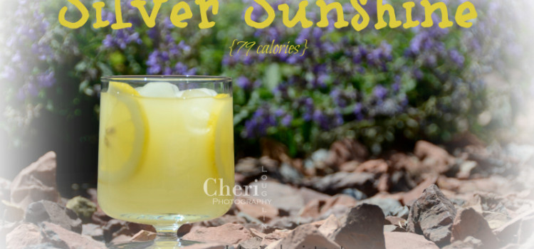 Silver Sunshine Low Calorie Cocktail