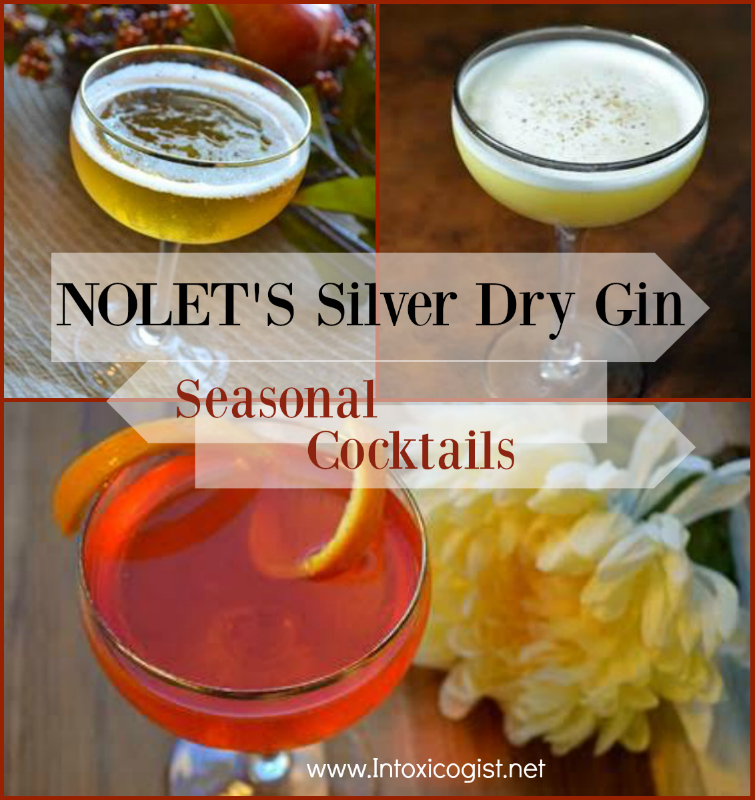 Sip NOLET's Silver Dry Gin as a Martini, on the rocks, with a splash of lime and tonic, or in fruit forward recipes with fresh fruit juices.