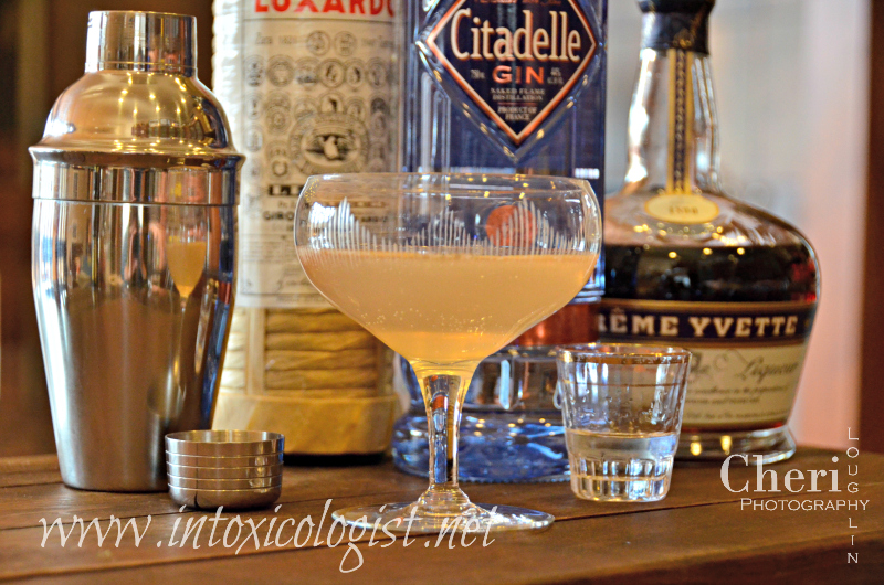 The Aviation Fizz was popularized in the 1920s. This classic cocktail is a variation of the Aviation cocktail. Both are 3 to 4 ingredient cocktails.