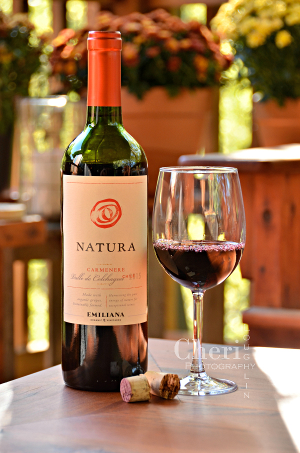 Natura Carmenere is an affordable, organic and vegan friendly wine from Chili. This medium dry wine nicely balances fruit and wood notes.