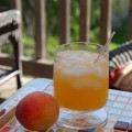 Classic Fuzzy Navel is a sexy summer sipper. Use fresh squeezed orange juice, peach vodka and add a few dashes of classic or peach bitters for summery, lush fruit flavor. ~ recipe adaption and photo by Mixologist Cheri Loughlin, The Intoxicologist