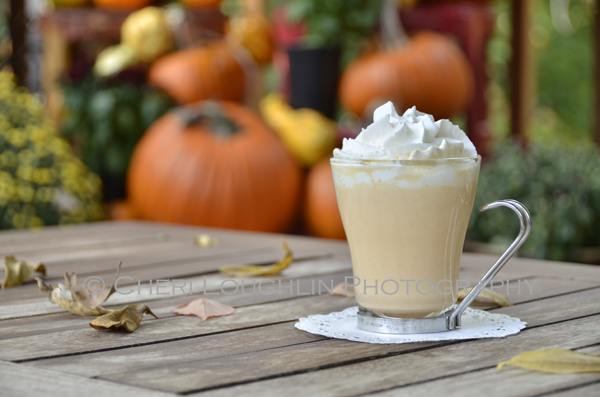 Pumpkin Pie White Hot Chocolate - Multiply this recipe to fill a thermos to take with you for outings such as fall hay rides and tailgating. It is the perfect fall weather hot chocolate treat. {recipe and photo credit: Mixologist Cheri Loughlin, The Intoxicologist. www.intoxicologist.net}