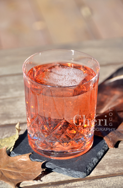 Autumn Breeze Drink Recipe - London Dry Gin, Aperol Aperitivo Liqueur, Cranberry Juice Cocktail, Pink Grapefruit Sparkling Mineral Water, Lime Slice or Grapefruit Twist Garnish - {recipe and photo credit: Mixologist Cheri Loughlin, The Intoxicologist www.intoxicologist.net}