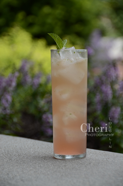 Melon Mojito – recipe by Cheri Loughlin, The Intoxicologist 2 ounces Silver Rum 1 cup fresh Watermelon – cut into small chunks 3/4 cup fresh Cantaloupe – cut into small chunks 15 fresh Mint Leaves 1 ounce fresh Lemon Juice 1/2 ounce Simple Syrup Watermelon, Cantaloupe, Mint Sprig Garnish