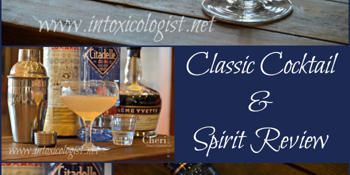 Aviation Fizz Classic Cocktail and Citadelle Gin Review
