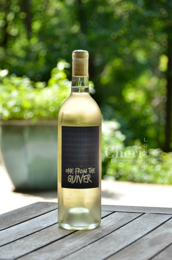 One for the Quiver Torrontés 2016 from the Winc.com collection