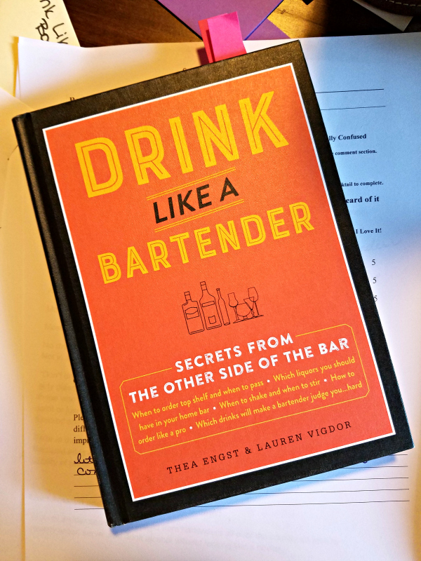 Drink Like A Bartender: Secrets from the Other Side of the Bar by Thea Engst and Lauren Vigdor - book review