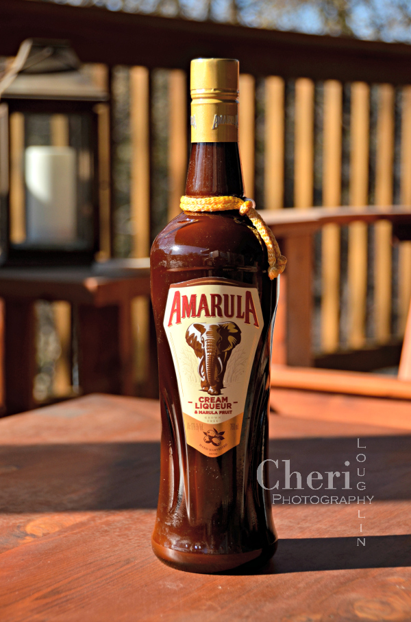 "Amarula Liqueur's global campaign, ""Don't Let Them Dissappear,"" is part of an ongoing partnership with WildlifeDirect to benefit African Elephants."